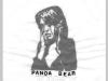 pandabear3